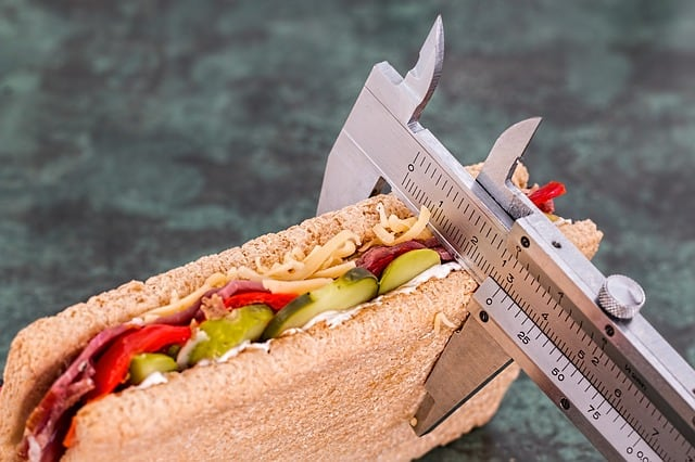 sandwich and calorie counter